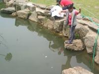 48_pond2-4.jpg