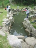48_pond2.jpg